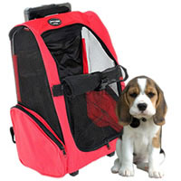 Bag pet dog and cat portable pet red color